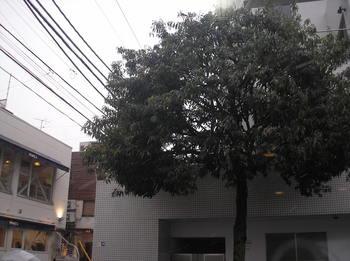 P1010051.JPG